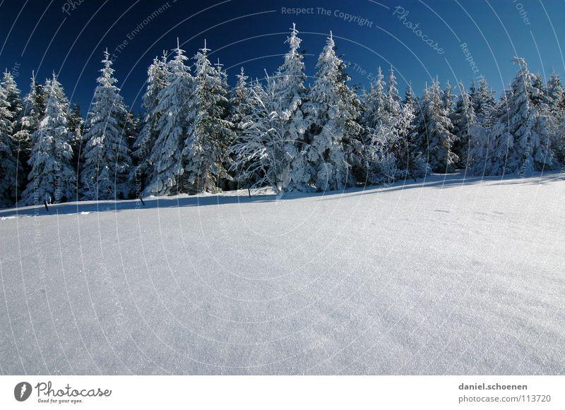 Weihnachtskarte 16 Winter Schwarzwald weiß Tanne Nadelwald Wald Tiefschnee wandern Freizeit & Hobby Ferien & Urlaub & Reisen Verhext mystisch abstrakt