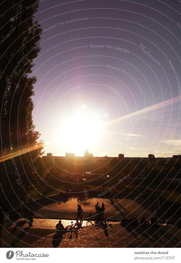 EINER DER LETZTEN HERBSTTAGE II Mensch Natur Himmel Baum Erholung Herbst Garten Park Wärme sitzen Physik Schönes Wetter Anhäufung