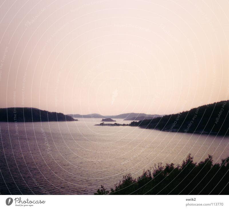 Bohuslän Ferne Strand Meer Insel Umwelt Natur Landschaft Wasser Wolkenloser Himmel Schönes Wetter Baum Küste Fjord rosa schwarz ruhig Freiheit Frieden Horizont