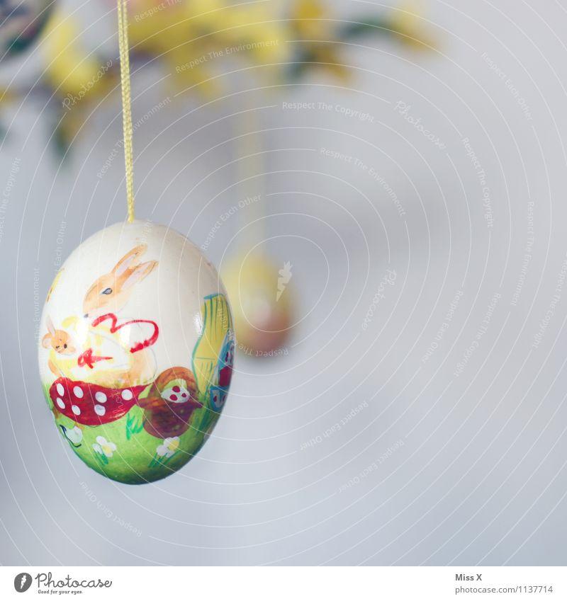 Hasi Farbe Dekoration & Verzierung Ostern Kitsch zeichnen hängen Basteln bemalt Osterei Osterhase Krimskrams Hühnerei