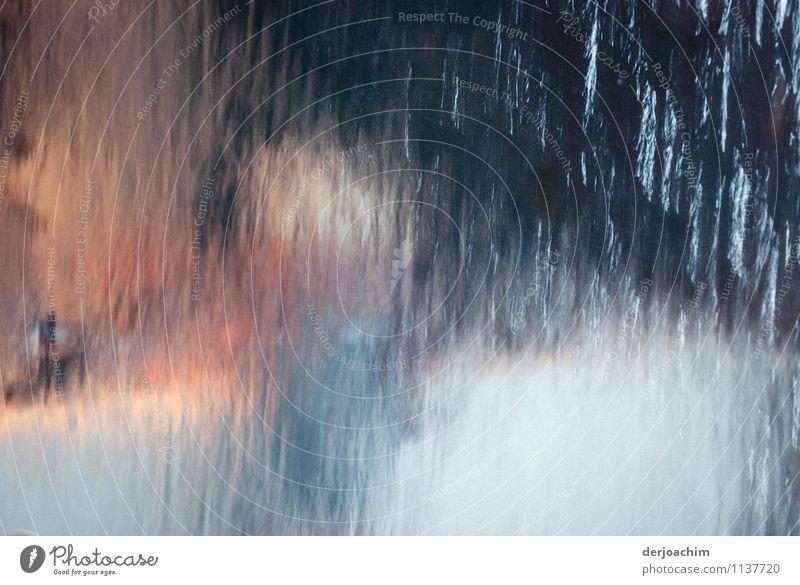 Anonym Mensch weiß Sommer Wasser Erholung Freude Fenster Bewegung Senior Autofenster außergewöhnlich Design Dekoration & Verzierung ästhetisch Lächeln Ausflug