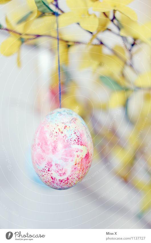 Osterei mit Schmetterling gelb Frühling Blüte Freizeit & Hobby Dekoration & Verzierung Ast Ostern Kitsch hängen Basteln bemalt Krimskrams Forsythienblüte
