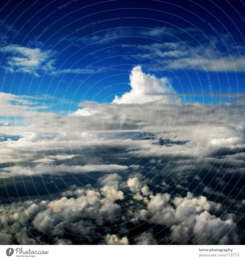 Endless Sky Wolken Wolkenformation Himmel blau hell-blau Formation über den Wolken Regenwolken Kumulus Wolkenberg Beleuchtung Watte Zuckerwatte weich Fallschirm