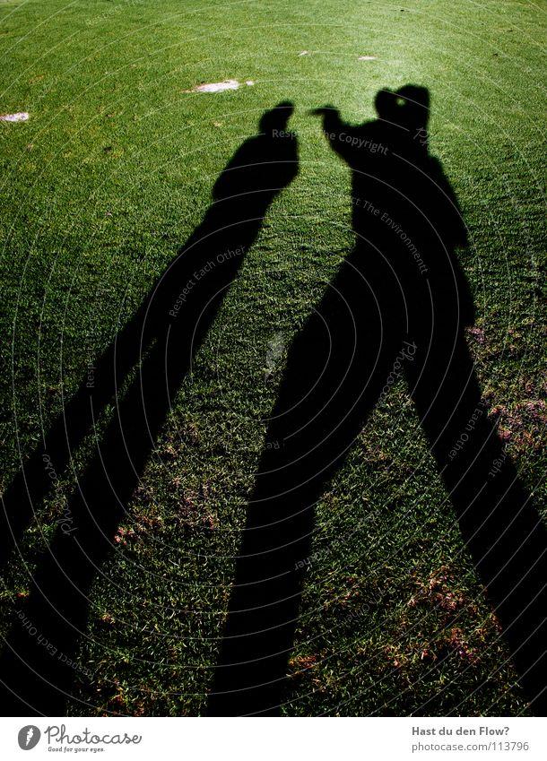 angriff/ desinteresse grün schön Sonne Winter Wiese kalt Spielen Gras Freiheit Haare & Frisuren Wind Angst laufen frei Rasen Hügel
