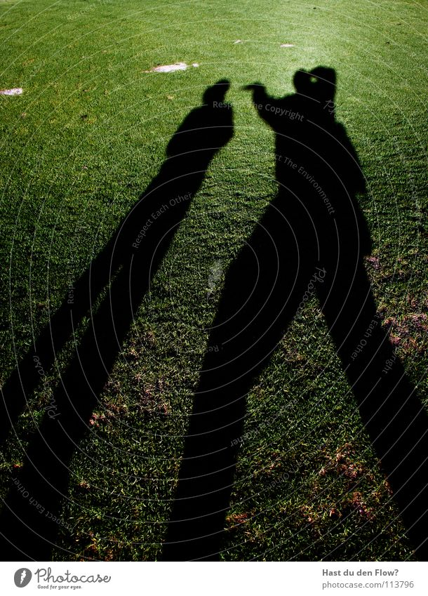 angriff/ desinteresse Wiese Gras grün Hügel Traumwelt Traumland Golfplatz Feindschaft verfolgen Winter Dezember saftig schön kalt Schal Monster Krallen böse