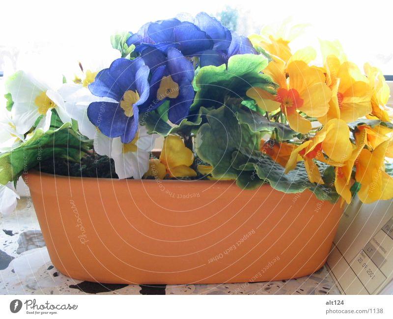Kunstblumen Blume gelb Dinge blau