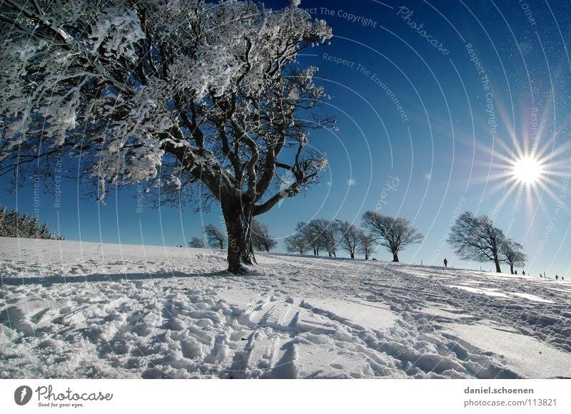 Weihnachtskarte 17 Himmel Natur blau weiß Baum Ferien & Urlaub & Reisen Sonne Winter Einsamkeit kalt Schnee Berge u. Gebirge Horizont Deutschland Wetter