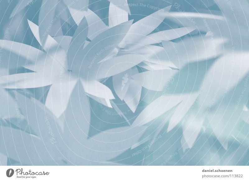 da hatte jemand viel Zeit zu basteln Papier weiß Hintergrundbild abstrakt Basteln hell-blau Blatt Blüte Dekoration & Verzierung grau Makroaufnahme Nahaufnahme