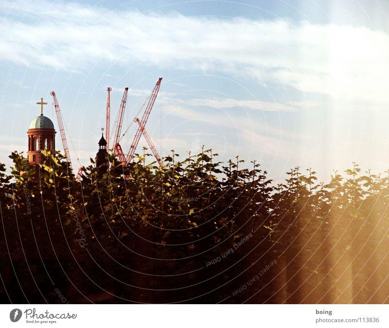 Yellow Polka Stadt Blatt Religion & Glaube Rücken Baustelle Aussicht Skyline Baumkrone Amerika Frankfurt am Main Kran stagnierend Demontage Fortschritt Schleier