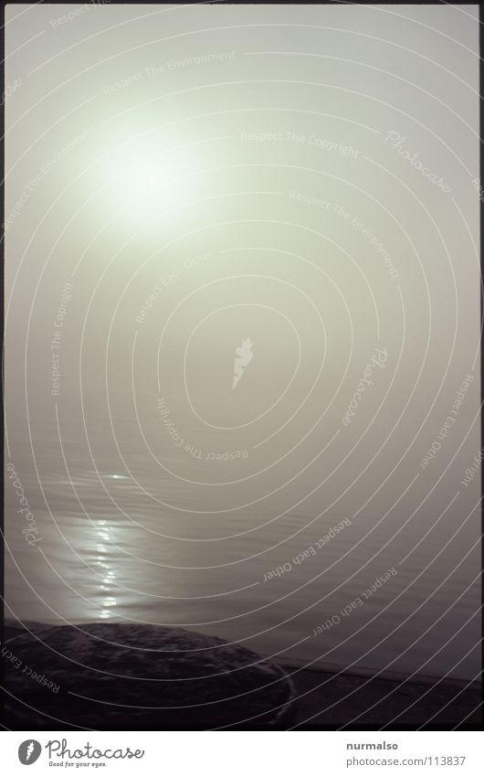 Nebel des Grauens 6 Herbst Gewässer grauenvoll unsichtbar Potsdam fein Stimmung Kongress Wasserfahrzeug untergehen Riff aufsteigen Anlegestelle Mole Angst Panik