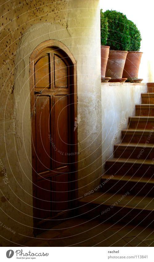 Im hintersten Winkel alt Ferien & Urlaub & Reisen Sonne Pflanze Sommer ruhig Erholung dunkel Wand Wärme Architektur Mauer Gebäude Stimmung Tür Treppe