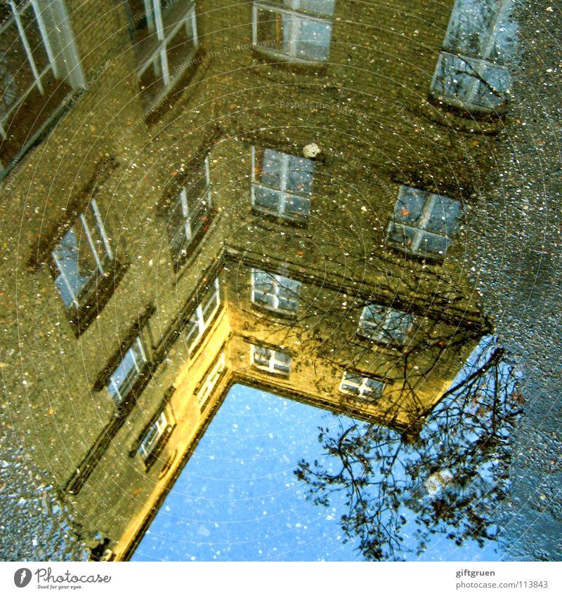 kreuzberg taucht ab Pfütze Kreuzberg Regen Herbst nass Reflexion & Spiegelung Haus Gebäude Hinterhof Baum Fenster Asphalt Industrie Berlin x-berg Wasser Wetter
