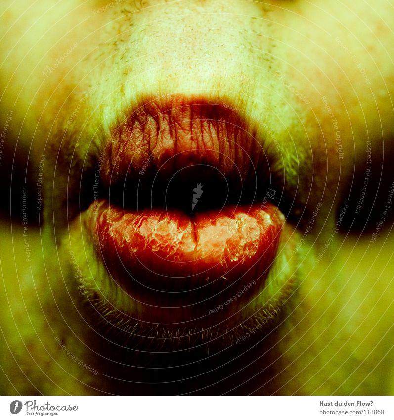Alien Mensch rot Sommer gelb Ernährung Kopf Mund Haut Fisch Vergänglichkeit Trauer Lippen Teile u. Stücke lecker Rauschmittel Verzweiflung