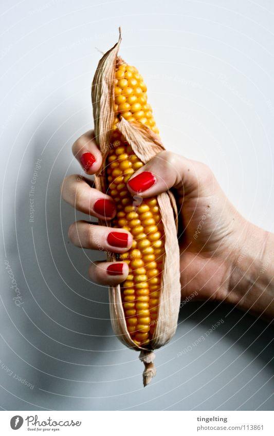 poppcorn Hand weiß rot gelb Finger festhalten lang Gemüse fangen Korn Fingernagel getrocknet Mais Nagellack Popkorn Kolben