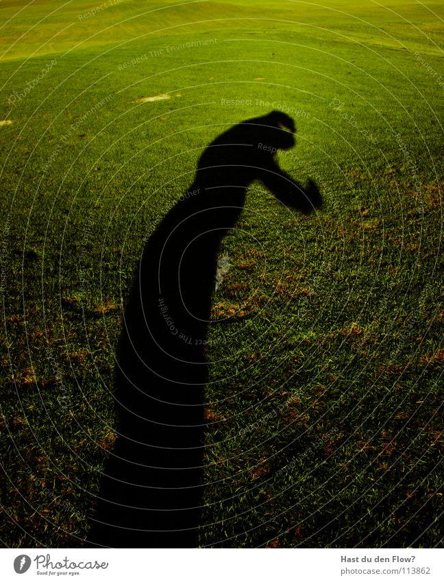 böser edgar Mensch grün schön Winter Wiese kalt Gras Freiheit Haare & Frisuren Wind Angst laufen frei gefährlich Rasen Hügel