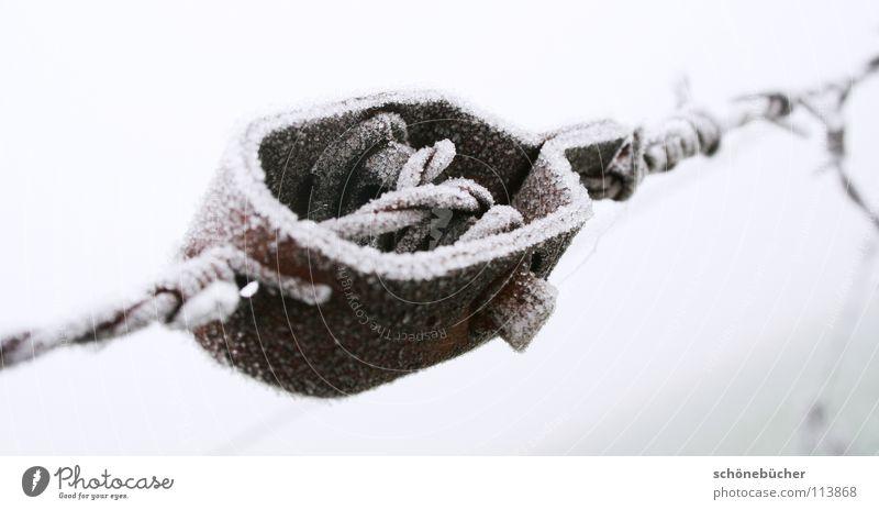 Rost mit Frost weiß Winter Einsamkeit kalt Schnee grau Traurigkeit Trauer trist verfallen Zaun gefangen Draht Schraube