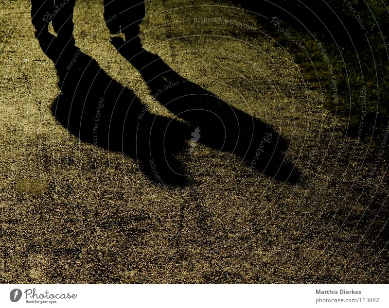 Zweisam Mensch Mann Natur Wege & Pfade Paar Zusammensein Kraft paarweise Bodenbelag Spaziergang Sicherheit Fußweg Belichtung Treue Koloss Bündnis
