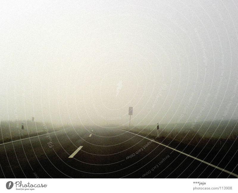 road to nowhere. Himmel Sonne Winter Straße kalt Bewegung grau Nebel Verkehr Perspektive fahren Mobilität Verkehrswege feucht Erkenntnis Verkehrsschild