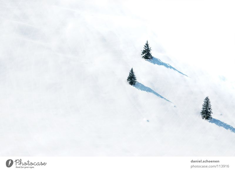 Weihnachtskarte 18 Ferien & Urlaub & Reisen weiß Baum Landschaft Winter Schnee grau Freizeit & Hobby Ausflug geheimnisvoll fahren Tanne Skifahrer unklar