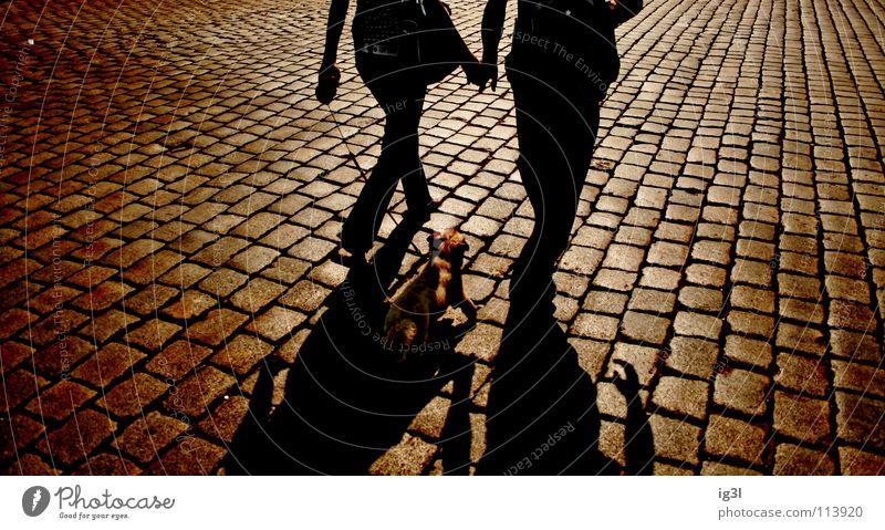 after sunset Mensch Hund schön rot Einsamkeit dunkel Liebe Gefühle Glück Feste & Feiern Stein braun Stimmung Paar Zusammensein Freundschaft