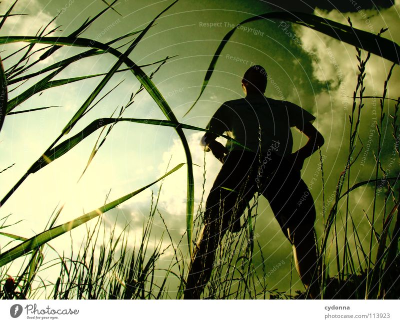 Silhouette I Mensch Mann Himmel Natur grün Sonne schön Freude Pflanze Sommer Wolken Leben Wiese Gefühle Stil Freiheit