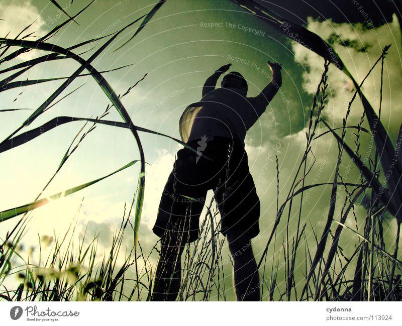 Silhouette II hüpfen Frühling Sommer Wiese Gras grün Mann Kerl Stil Sonnenuntergang Körperhaltung Halm Froschperspektive Sonnenstrahlen Wolken Feld Gefühle
