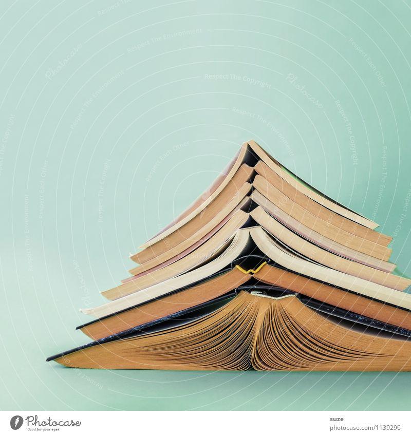Schwere Kost Lifestyle Stil Design lesen Bildung Schule lernen Studium Kultur Printmedien Buch Bibliothek Zeichen einfach Neugier rund klug türkis Weisheit