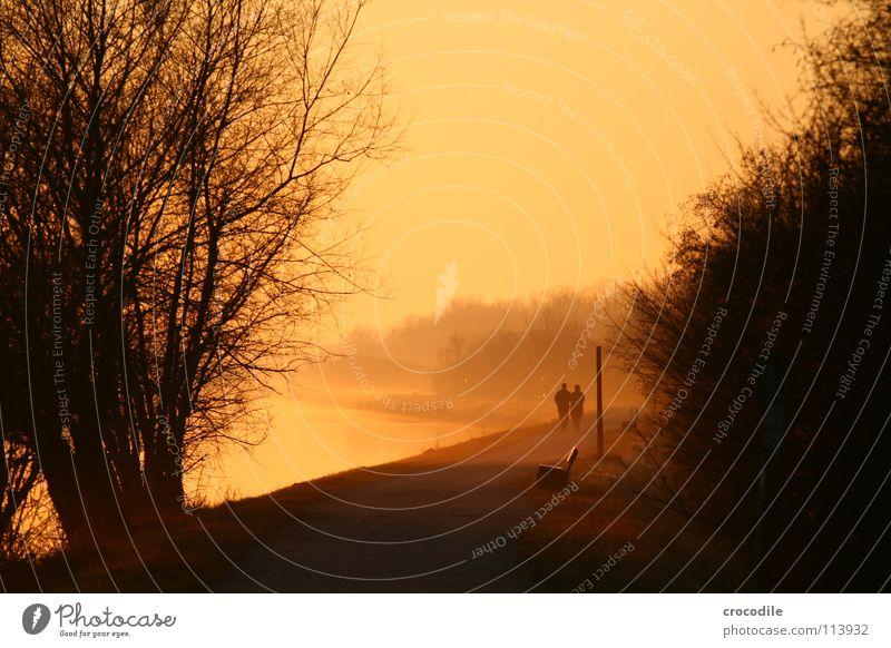 sundown walkers Mensch schön Baum Sonne dunkel Wege & Pfade See Küste gehen Nebel Fluss Bank Romantik Sträucher Spaziergang Kitsch