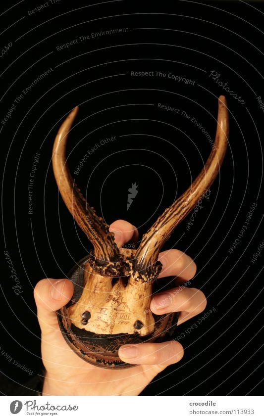 hirschhand Mensch Hand alt Tier Tod Holz Finger festhalten Horn Hirsche Skelett Mord Defensive Reh