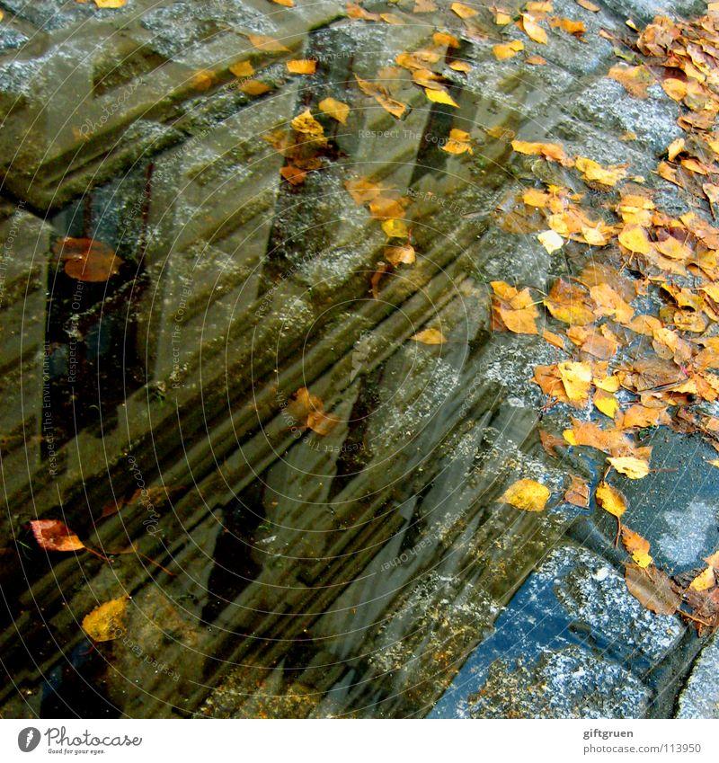 berlin andersrum Pfütze Kreuzberg Regen Herbst nass Reflexion & Spiegelung Haus Gebäude Fenster Fassade Kopfsteinpflaster Detailaufnahme Berlin x-berg Wasser