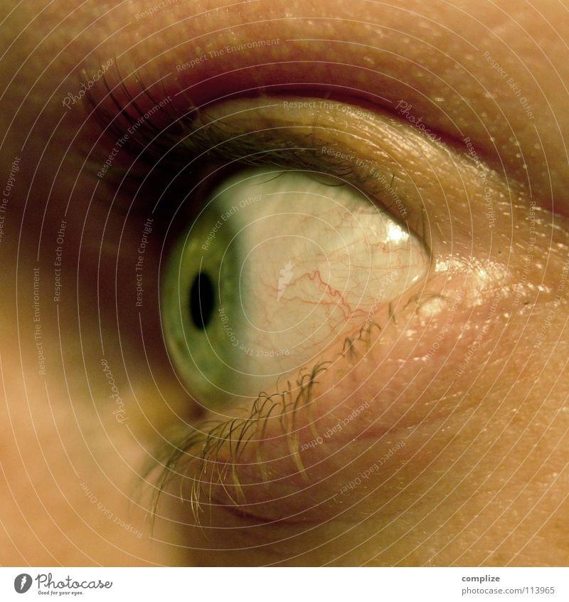 Fischauge Mensch Mann schön Auge Kopf Denken Angst Aussicht beobachten Wissenschaften Kontrolle Blut Gedanke Überraschung Wimpern Lied