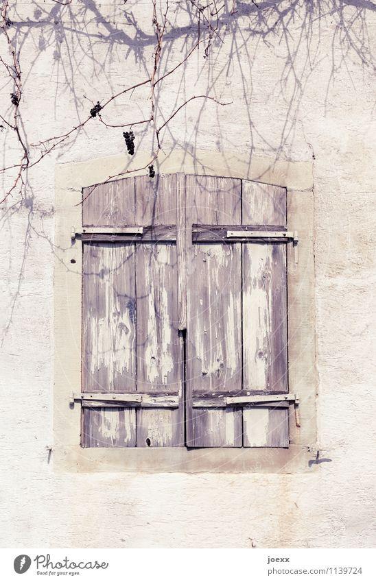 Abschied Mauer Wand Fenster Fensterladen Stein Holz alt schön braun weiß Schutz ruhig Interesse Trauer Vergänglichkeit Wandel & Veränderung Häusliches Leben