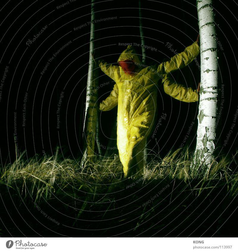 libellenkönig gelb grau grau-gelb Wald Anzug Schutzanzug verrückt Nacht Langzeitbelichtung Birke Konzentration Macht deep in the woods tief im wald Natur grey