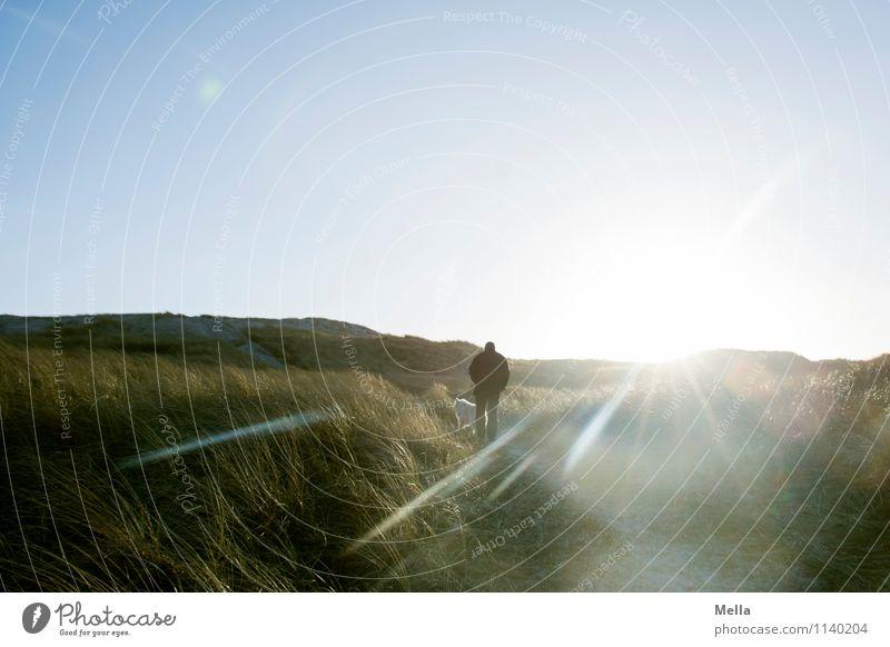 Auf dem Weg Hund Mensch Natur Ferien & Urlaub & Reisen Mann Sonne Einsamkeit Landschaft Erwachsene Umwelt Leben Gras Küste Wege & Pfade gehen hell