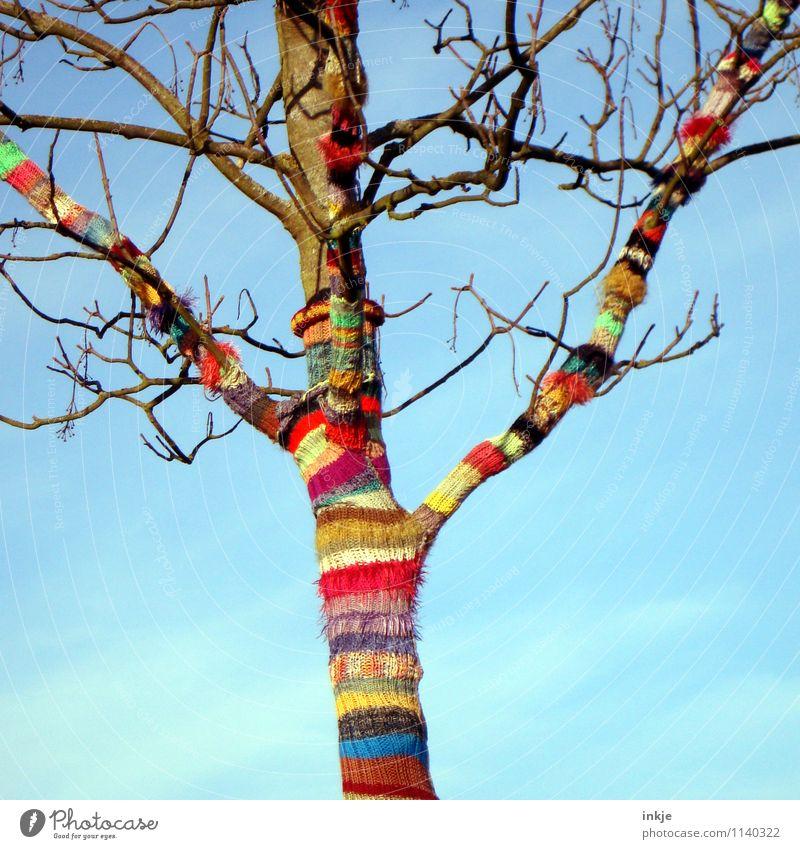 ab in den Frühling! Lifestyle Freude Freizeit & Hobby Handarbeit stricken Natur Himmel Herbst Schönes Wetter Baum Wolle Linie Streifen Spirale gestreift