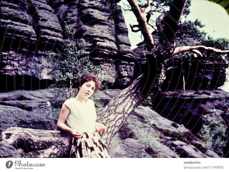 Ursel, Sächsische Schweiz, 1958 Mensch Frau Natur Ferien & Urlaub & Reisen Sommer Junge Frau Baum Erholung Einsamkeit Landschaft Wald Berge u. Gebirge Mode