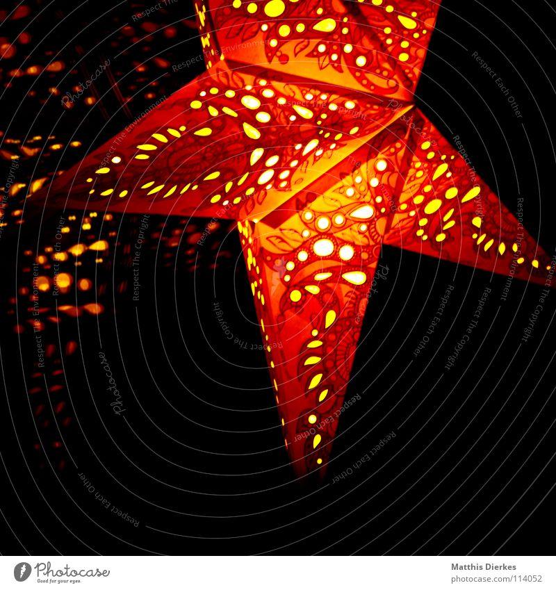 Weihnachtsstern Weihnachten & Advent schön rot Winter Fenster Spielen Wärme Lampe elegant gold ästhetisch Stern (Symbol) Stoff niedlich Dekoration & Verzierung