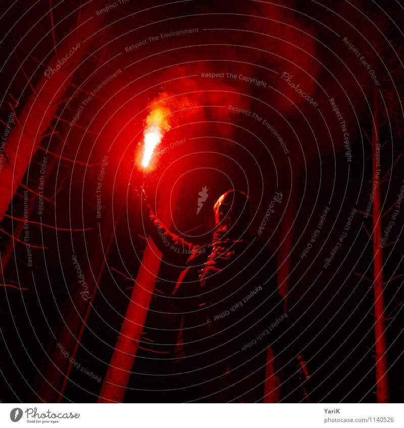 red-light woods Mensch Kind Jugendliche Mann rot Junger Mann 18-30 Jahre dunkel Wald Erwachsene maskulin Angst 13-18 Jahre bedrohlich Brand Wut