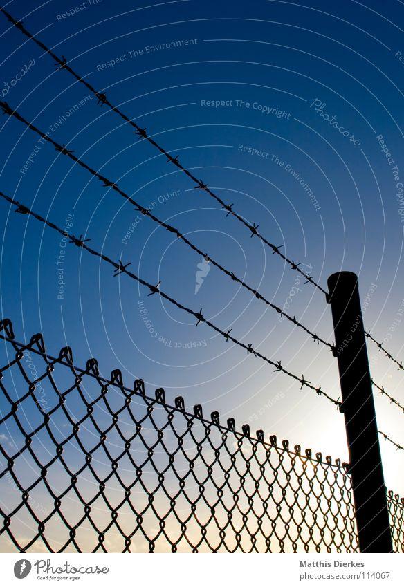 Zaun Himmel Sonne blau Schilder & Markierungen Industrie gefährlich bedrohlich Wut Grenze Zaun DDR Krieg gefangen Barriere Zerstörung Warnhinweis