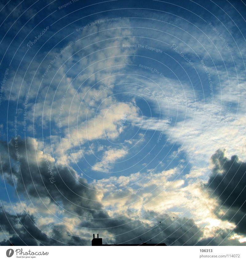 JUST WOLKEN Himmel Natur blau weiß schön Sonne Wolken schwarz dunkel Gefühle Stimmung wandern Streifen streichen Aussicht Fleck
