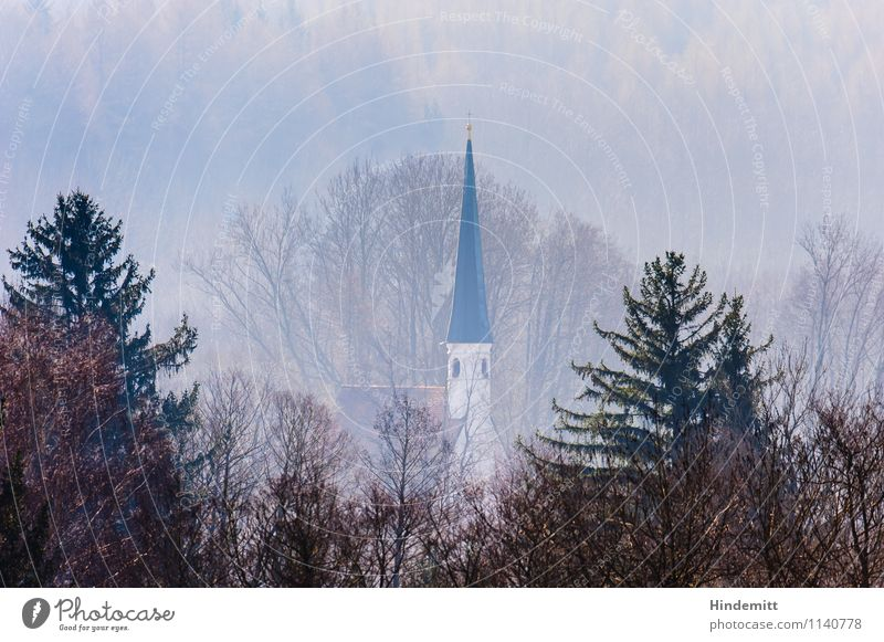Weit weg ... blau Baum Landschaft ruhig Ferne Wald Umwelt Frühling Religion & Glaube rosa Nebel Tourismus hoch Spitze Kirche niedlich