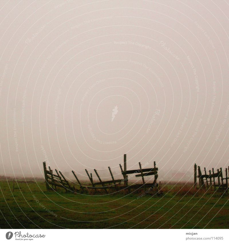 Foggy Nebel Pferch Zaun kaputt Ruine Feld Wiese Wasserdampf einsperren verfallen violett grün dunkel Bodennebel eingeengt Wolken Weide Ausbruch gebrochen