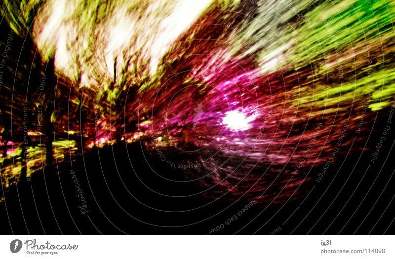 albtraum grün Baum Freude gelb Wärme Gefühle Tod Glück Feste & Feiern außergewöhnlich See Angst PKW Geschwindigkeit gefährlich Kraft