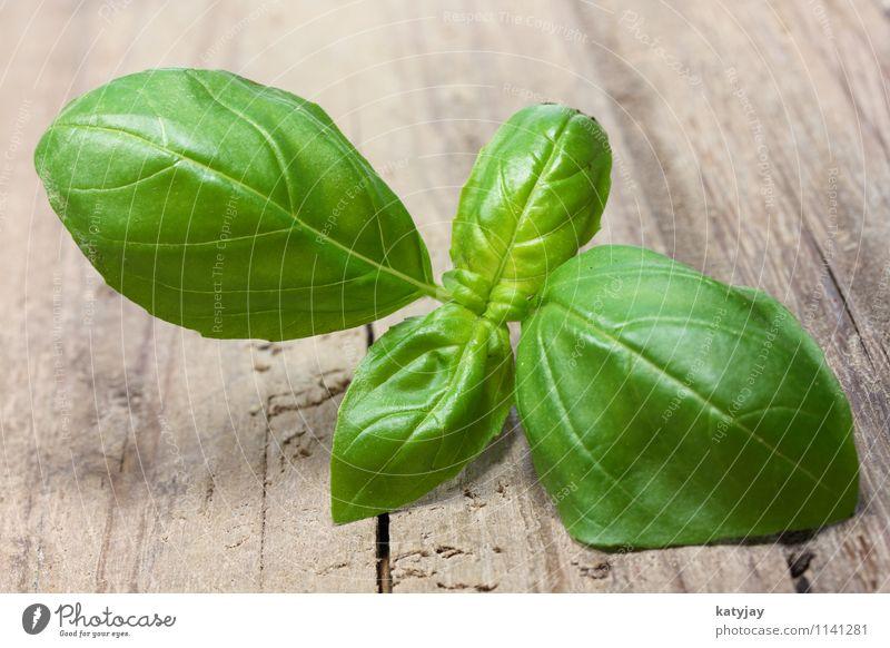 Basilikum Natur Pflanze grün Blatt Gesunde Ernährung natürlich Speise Holz Essen Hintergrundbild Foodfotografie Wachstum frisch Tisch Kochen & Garen & Backen