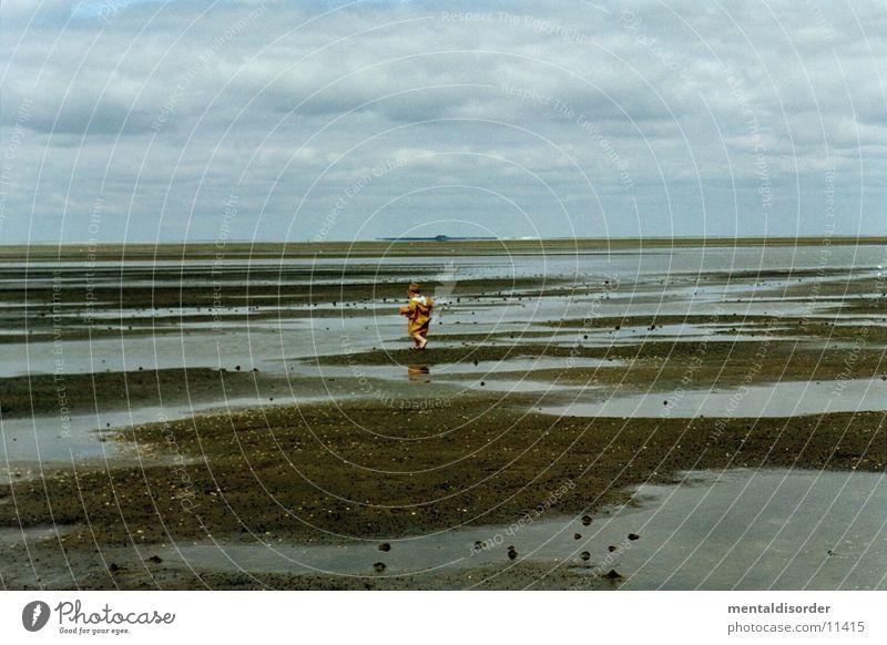 im Watt Wattenmeer Kind Ebbe Wurm Wolken Horizont See Meer Schlamm Pfütze Muschel Sammlung Nordsee Wasser Flut Junge Himmel
