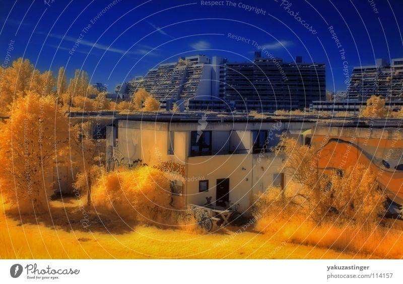 Olympisches Dorf Wohnung Beton Biotop Denkmalschutz gelb Baum Gras Wiese Wahrzeichen Olympiade Studentenwohnungen blau