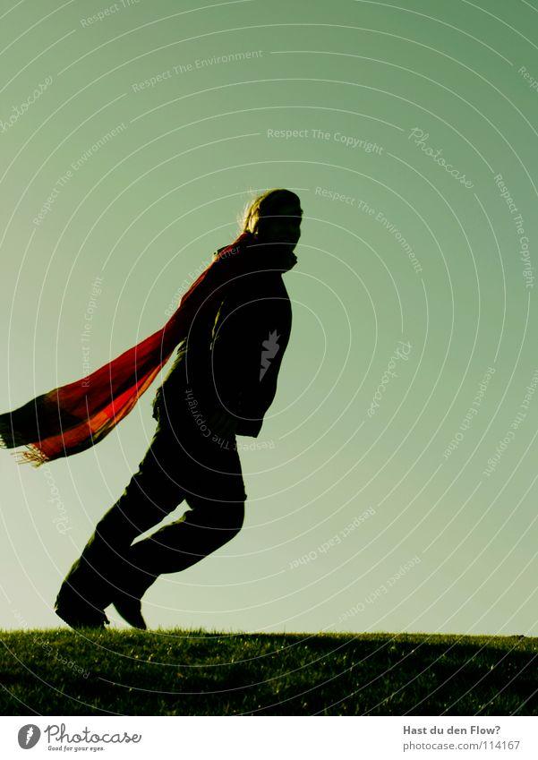 superwoman Mensch Frau Himmel grün schön Winter Held Wiese kalt Berge u. Gebirge Gefühle Freiheit Gras Haare & Frisuren Wind fliegen