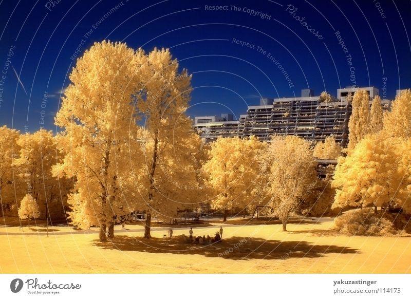 Olympisches Dorf 2 gelb Sommer Baum Beton Fassade Infrarotaufnahme Farbinfrarot Langzeitbelichtung Surrealismus blau Himmel Channelshifting
