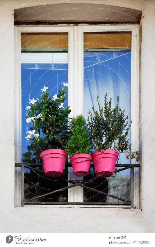 French Windows I Kunst ästhetisch Autofenster Flugzeugfenster Fensterladen Fensterscheibe Fensterbrett Fensterblick Fensterrahmen Blumentopf Farbfoto mehrfarbig