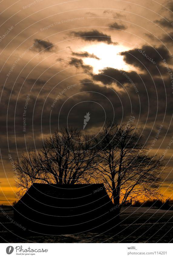 verlassene Hütte Scheune Sonnenuntergang Baum Herbst Wolken dramatisch Haus Dämmerung Abend dunkel laublos gruselig mystisch Himmel Landschaft Abenddämmerung